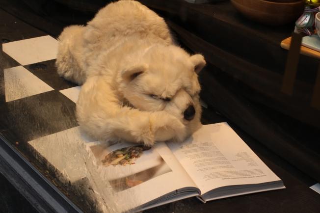 IMG_1396 bjørn som leser