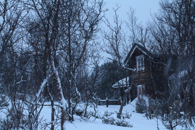 IMG_8557fagnastølen januar