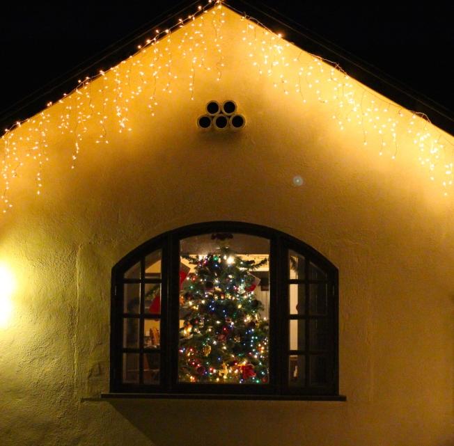 juletre i vindu